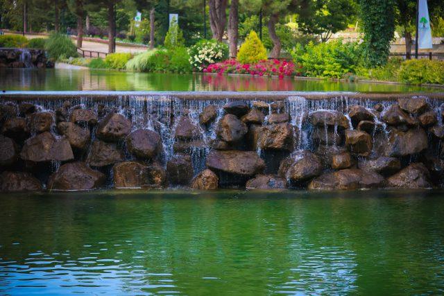 Pompa do oczka wodnego – jaką wybrać?
