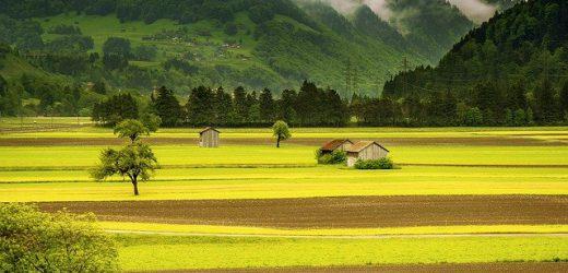 Dom na wsi i w mieście