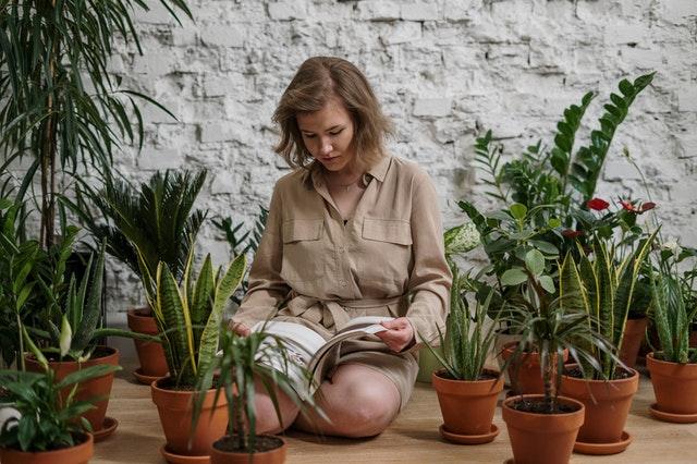 Growboxy, czyli marsjańska uprawa w domu